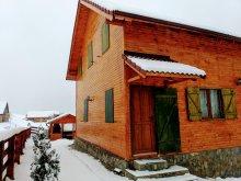 Accommodation Dragoslavele, Magnolia Vacation home