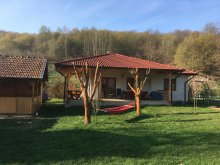 Accommodation Galda de Jos, Cottage under the woods