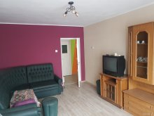 Accommodation Covasna county, Sunlit Apartment