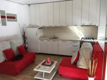 Accommodation Arad county, Central View Residence