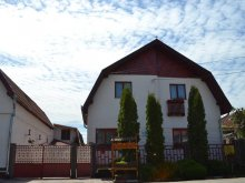 Bed & breakfast Turnu Ruieni, Nisztor Guesthouse