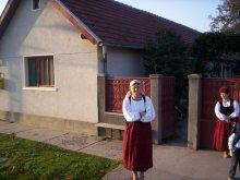 Cazare județul Hunedoara, Pensiunea Szabó