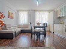 Apartament Sfântu Gheorghe, Deluxe Apartment