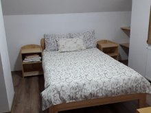 Accommodation Valea Rece, Bagoly Guesthouse