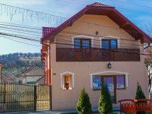 Accommodation Bârsău Mare, Muskátli B&B