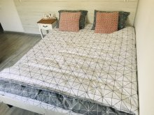 Accommodation Viștea, Ryana Guesthouse