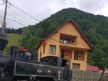 Guesthouse Călinești-Oaș, Ile Guesthouse