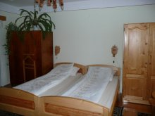 Bed & breakfast Sâncraiu, Tünde Guesthouse