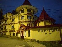 Szállás Bákó (Bacău) megye, Pufu Villa