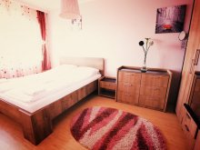Apartment Sibiu county, HMM Apartment