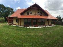 Accommodation Ciceu, Fűzfa Guesthouse