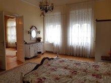 Accommodation Csongrád county, Erzsébet Utalvány, Gabriella Apartment