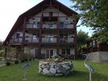 Accommodation Desești, Franc Guesthouse