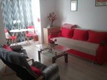 Accommodation Braşov county, Tichet de vacanță, La Morena Blanca Apartment