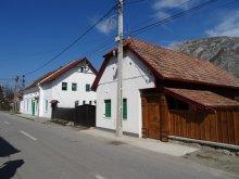 Guesthouse Băișoara, Panoráma Pension
