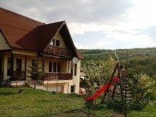 Accommodation Săvădisla, Apartment Eva Rustic