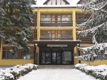 Cazare Nemti, Medves Hotel