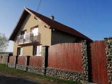 Accommodation Vlăhița, Mónika Guesthouse