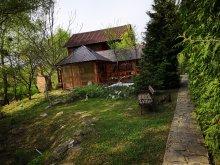 Accommodation Sălaj county, Măgura Cottage
