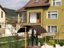 Accommodation Hunedoara county, Luminița Vacation Home