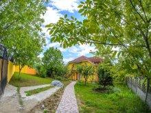 Villa Chisău, Liana Villa