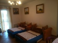 Accommodation Debrecen, Crazy Frog Gambrinus Apartment