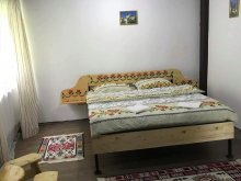 Bed & breakfast Gorj county, Patrick Guesthouse