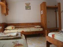 Accommodation Cuza Vodă, Pinciuc Guesthouse