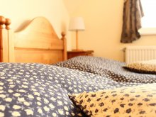 Bed & breakfast Bugac, Boulevard City Guesthouse