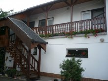Accommodation Csokonyavisonta, Violet Guesthouse