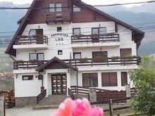 Accommodation Valea Cetățuia, Lais Guesthouse