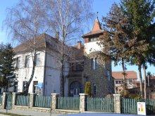 Cazare Augustin, Palatul Copiilor