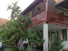 Accommodation Brăzești, Piroska Guesthouse