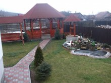 Accommodation Pârvulești, Gabi Guesthouse
