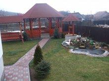Pensiune Satu Nou (Pârgărești), Pensiunea Gabi