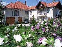 Vendégház Groși, Léda Panzió