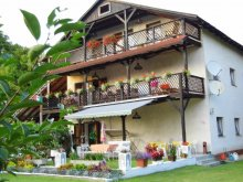 Accommodation Balatonszárszó, Villa Negra Guesthouse