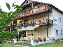 Panzió Balatonfenyves, Villa Negra Panzió