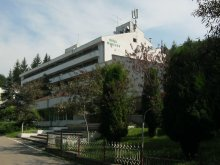 Hotel Cârăști, Hotel Moneasa