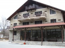Accommodation Lunca (Voinești), Tranzit Guesthouse