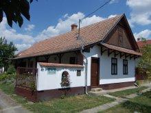 Apartament Jászberény, Casa Csillik