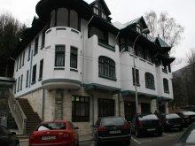Cazare Cetățuia, Hotel Tantzi
