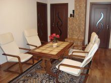 Accommodation Băile Selters, Rita Guesthouse