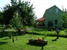 Vendégház Borkút (Valea Borcutului), RGG-Görgényszentimrei Református Vendégház