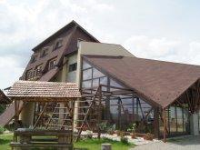 Panzió Felsöpeterd (Petreștii de Sus), Andreea Panzió