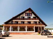 Accommodation Mureş county, Koronka Guesthouse