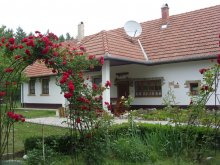 Apartament Kiskőrös, Casa de oaspeți Cinege