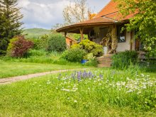 Bed & breakfast Zsira, Nagy Guesthouse