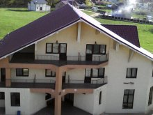 Accommodation Buda (Răchitoasa), Păun Guesthouse