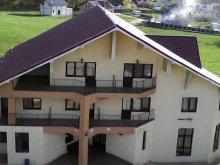 Accommodation Fântânele (Motoșeni), Păun Guesthouse